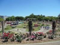 5月 バラ園見物