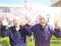春爛漫*お花見日和